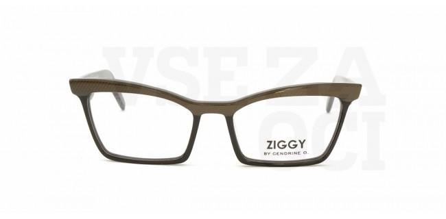 Ziggy 18 2
